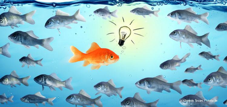 Ein Fisch schwimmt gegen den Strom