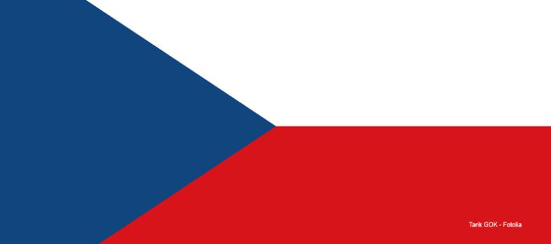 Tschechische Flagge