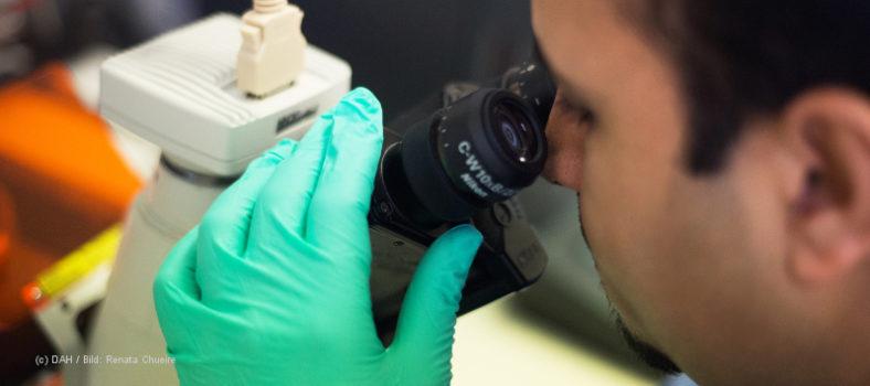 Ein Mediziner blickt durch ein Mikroskop