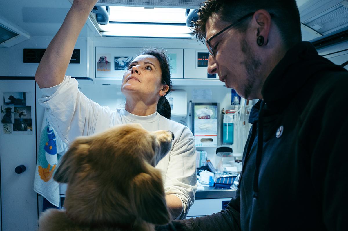 Tierärztin greift nach Utensilien, das Herrchen des Hundes hält seinen Hund mit hellem Fell fest.