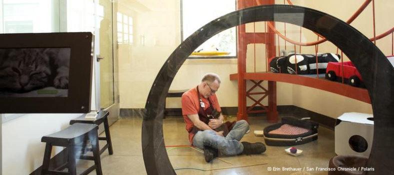 Aids-Langzeitüberlebende: Kevin VandenBergh Tierheim